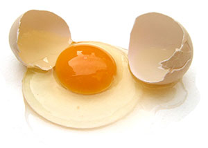 egg powders