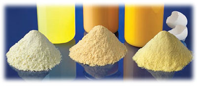 egg powders for food
